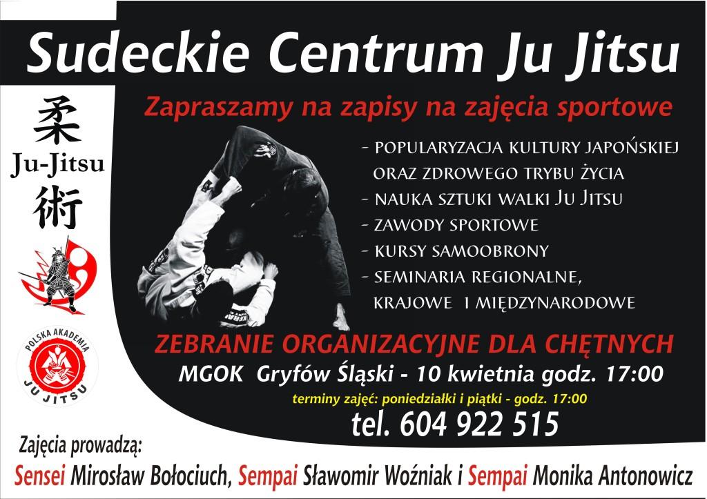 ju jitsu plakat1 (1)
